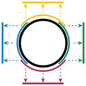 A Circle is a Manifold